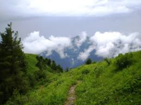 Murree, Abbottabad Holiday Package (3D/2N) Mobile View